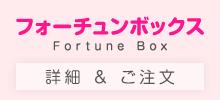 フォーチュンボックス Fortune Box 詳細&ご注文