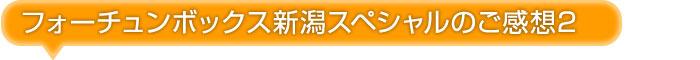 フォーチュンボックス新潟スペシャルご感想2